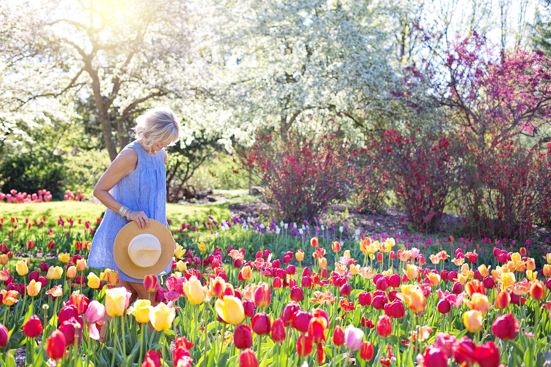ripartiamo come la primavera cambio stagione